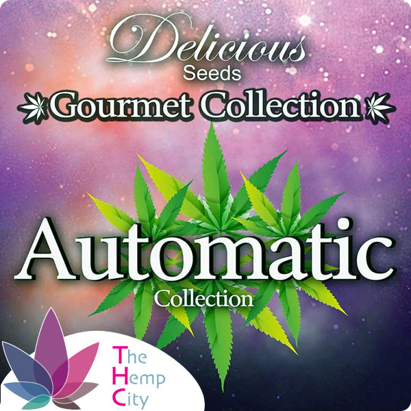 Gourmet Collection - Automatic Strains #2