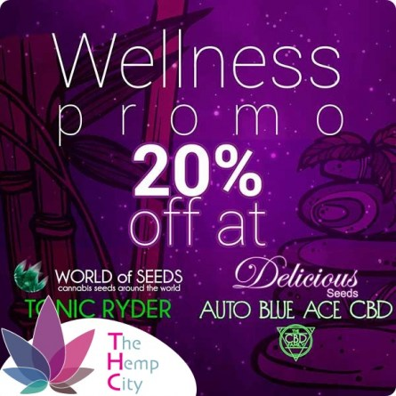Wellness Auto Pack